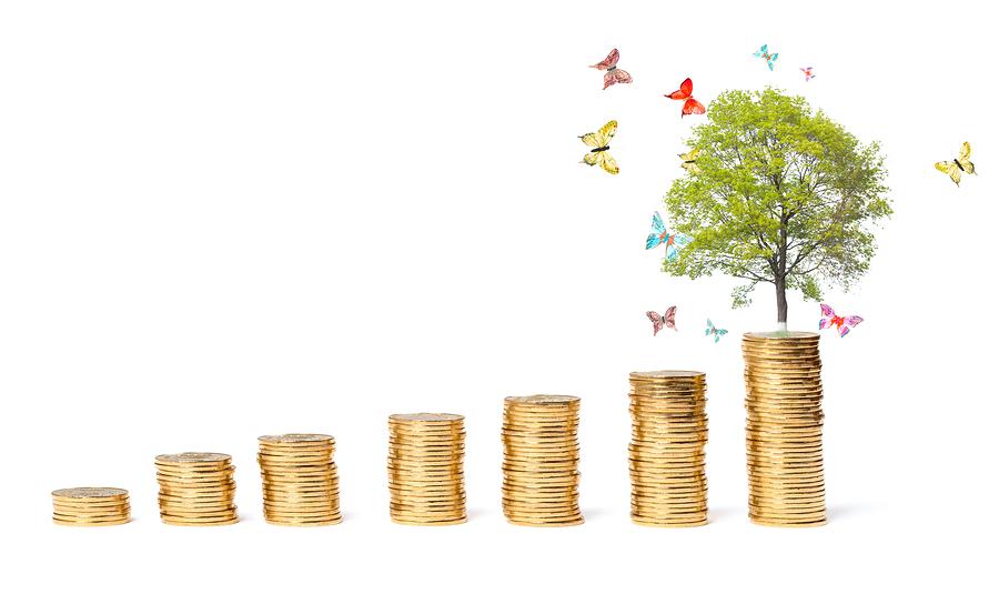 Improve Your Credit Series: Credit Rehab Savings Program