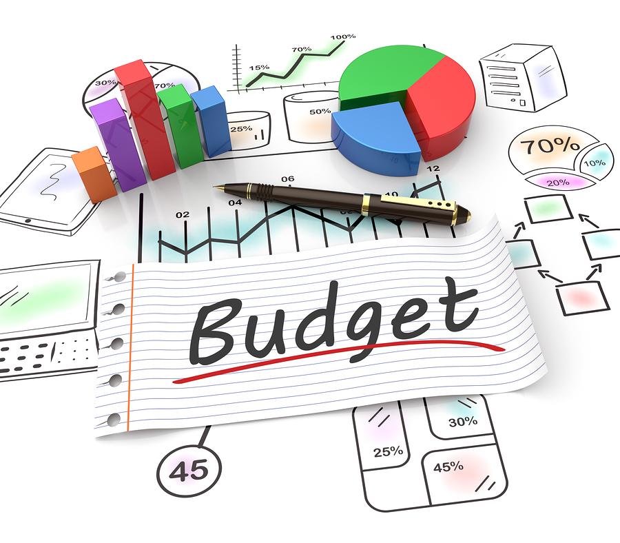 Why do budgets fail?