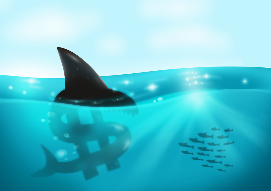 Predatory Borrowers: Victims or Offenders?