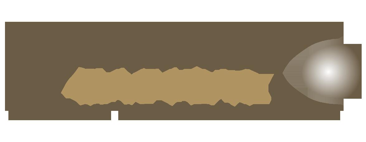 Dynamic Capital