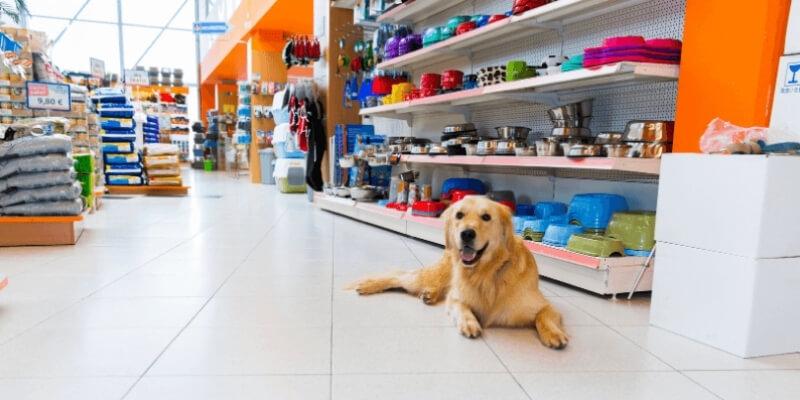 Business Loans Pet Shop